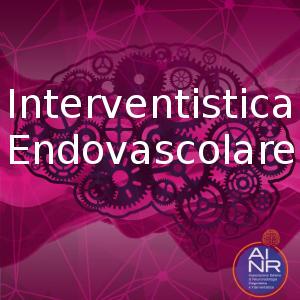 Master di Neuroradiologia Interventistica Endovascolare 2020 AINR